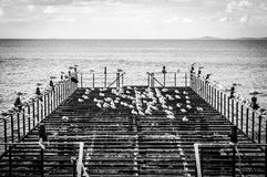 有海鸥和风平浪静的使荒凉的船坞 免版税图库摄影