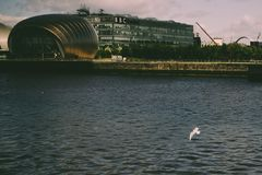 有海鸥的格拉斯哥IMAX剧院 免版税库存图片