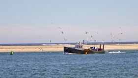 有海鸥的渔船 库存照片