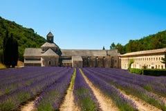 有淡紫色领域的Senanque修道院 库存图片