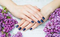 有深蓝修指甲和丁香花的妇女手 免版税库存图片