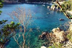有清楚的水和植被的蓝色盐水湖 免版税库存图片
