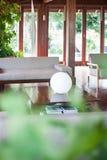 有温室植物的舒适客厅 免版税库存图片