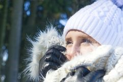 有温暖的衣裳和毛皮的一个少妇在冬天太阳 库存图片