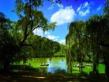 有游人的小船湖的在中央公园,纽约 免版税图库摄影