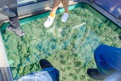 有游人的水晶玻璃昂坪电车在山,拜访天狮Tan或大菩萨位于Po林 免版税库存照片