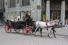 有游人的马支架在Heldenplatz,维也纳 免版税库存照片