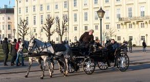 有游人的马支架在Heldenplatz 库存照片