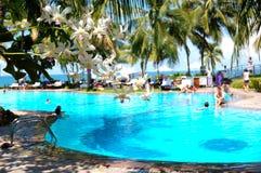 有游泳池和兰花的花的豪华旅馆 免版税库存照片