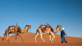 有游牧人的独峰驼有蓬卡车在撒哈拉大沙漠摩洛哥 图库摄影