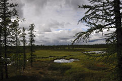有湖在绿色草甸 有在深蓝天空的许多白色云彩 库存照片