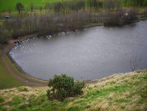 有湖的公园在爱丁堡, 免版税库存图片