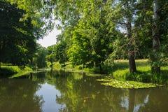 有湖的夏天公园 免版税图库摄影