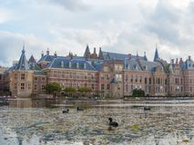 有湖的海牙Binnenhof foregroundwith老傻瓜游泳的 库存照片