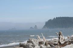 有漂流木头的迷雾山脉海岛在Rialto海滩 奥林匹克国家公园, WA 免版税库存照片