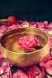 有漂浮的西藏唱歌碗在水桃红色牡丹花 燃烧的蜡烛和瓣在黑石背景 库存照片