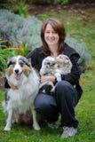有澳大利亚牧羊人成年女性狗和她的小狗的狗的饲者在胳膊 免版税库存图片