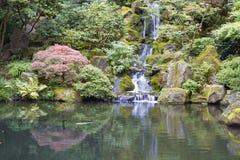 有瀑布的日本庭院Koi池塘 免版税库存图片