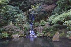 有瀑布的美丽的日本池塘 免版税库存图片