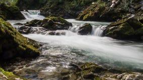 有瀑布自然的峡谷森林 免版税库存图片