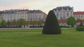 有灌木和树的绿色草坪在路和大厦附近的城市 股票录像