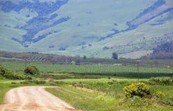 有灌溉系统的风力场路在麦地 免版税库存图片