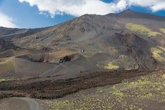 有火山口的埃特纳火山和在西西里岛,意大利的变硬的熔岩流 库存照片