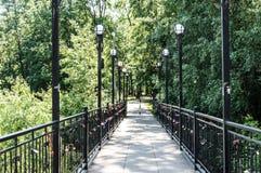 有灯的桥梁 免版税库存图片