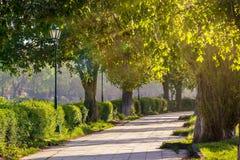 有灯笼的老城市公园 免版税库存照片