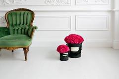 有灰泥的墙壁 在黑匣子的桃红色玫瑰 在客厅豪华内部的完善的礼物  复制空间 图库摄影