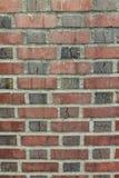 有灰浆背景垂直的被风化的红砖墙壁 免版税库存图片