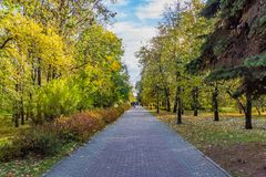 有灰色和红色铺路板的一条被铺的道路与一群人和黄色叶子在树中和灌木与五颜六色的叶子r 免版税库存照片