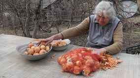 有灰色头发的一个老妇人在烹调前拾起葱在厨房里,有机蔬菜,她自己的庄稼 影视素材