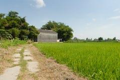 有灰色砖议院的中国村庄 免版税库存照片