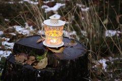 有灼烧的蜡烛的装饰灯笼在秋天公园晚上 免版税库存图片