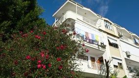 有烘干的洗衣店住宅房子在阳台和明亮的开花的玫瑰的布什在它旁边的 步行在土耳其 库存照片