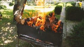 有烤肉的美好的地方在围场 灼烧的木柴 慢动作 乡下,乡间别墅 股票视频