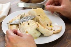 有煮沸的鳕鱼的板材 免版税库存图片