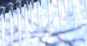 有熔化的冰柱的录影和在冻结的背景的下跌的发光的下落 E 影视素材