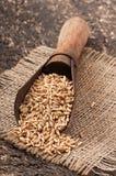有燕麦五谷的老测量的瓢  免版税图库摄影