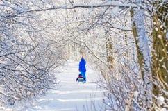 有爬犁的女孩在吠声公园森林冬天雪冷的霜霜树枝 库存图片