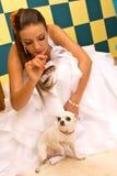有爱犬的新娘 免版税图库摄影