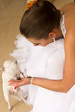 有爱犬的新新娘 免版税库存照片