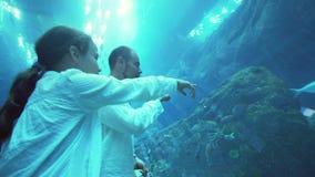 有爸爸的十几岁的女孩敬佩在水族馆的玻璃隧道的海洋生物在迪拜购物中心股票英尺长度录影的 股票视频