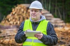 有片剂个人计算机的森林工程师在堆日志附近 免版税库存图片