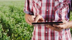 有片剂的农夫增加关于成长的数据 影视素材