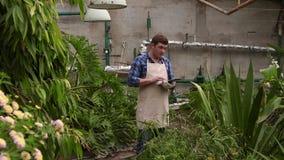 有片剂的农艺师人进行增长的植物的检查温室的并且投入显示 影视素材