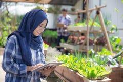 有片剂的少妇在农场 免版税库存图片