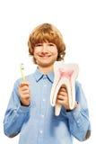 有牙模型和牙刷的微笑的年轻男孩 库存照片