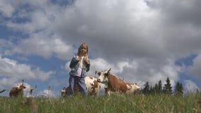 有牛的农夫孩子在草甸、旅游女孩和母牛动物在山 免版税图库摄影